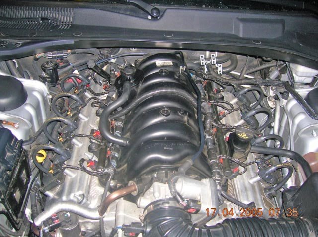 D Obsessed Engine Bay New Taylor Shorty Wires Installed Dscn Edited on Car Engine Diagram